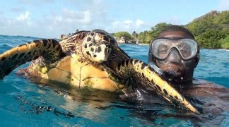Discovery Tours & Activities Seychelles