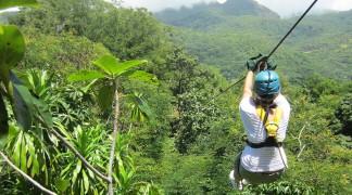 Fun Activities Zipline Adventures Seychelles