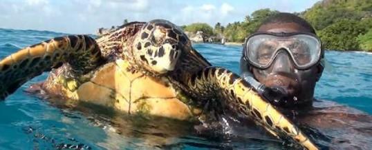 Fun Activities Seychelles