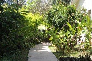 Hotel La Roussette Seychelles Garden Pathway
