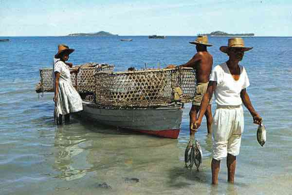 Seychelles Fisherman